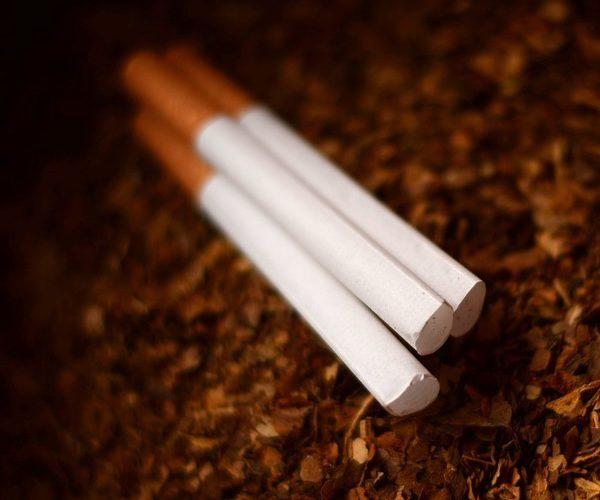 Marques de cigarettes cruelty free